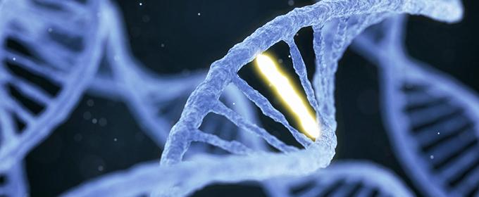 遺伝性の「AGA」、発症のスイッチを入れるのは何?